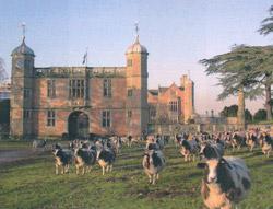 Chatsworth Estate in Derbyshire