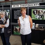 JSS members man the stand all day answering inquiries about the breed.